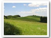 Land and Acreage Loans