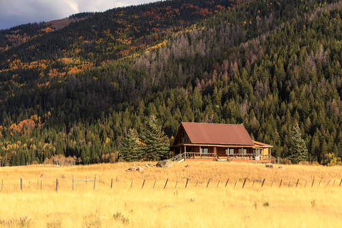 House in a field with mountains – How to purchase remote NW property